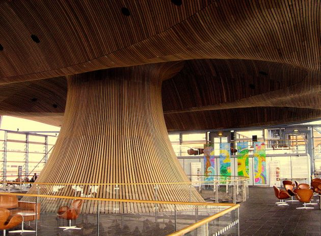 wood projects using cedar